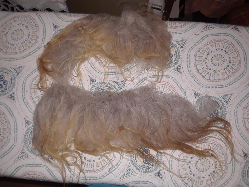 Wool 001